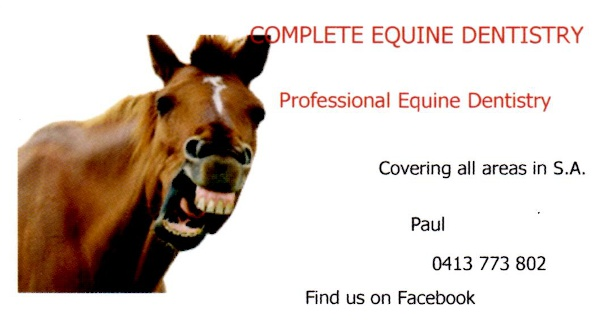 Complete Equine Dentistry