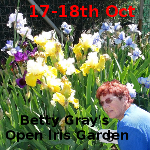Betty Gray Open Iris Gardens 17-18th Oct 2015