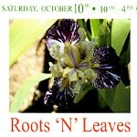 Roots N Leaves Nursery Opening Flier 10th Oct 2015