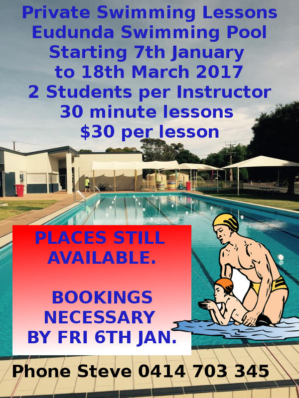 Private Swimming Lessons Jan - March 2017